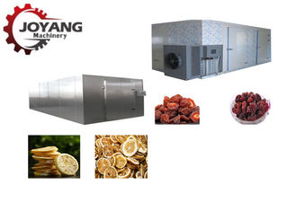 Hot Air Fruit Cranberry Kiwi Mango Grape Date Drying Oven Machine With Long Life